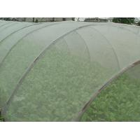 Buy cheap Green House Using Anti-insect screen 40x25 mesh,PE Plant Anti Insect Net,Mosqutio Screen product