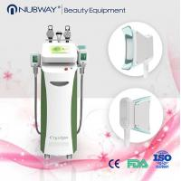 Buy cheap Wholsale High Quality Cryolipolysis Fat Freeze Cryolipolysis Slimming Machine product