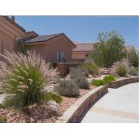 Buy cheap Best artificial roof grass product