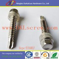 #14 Gauge Din 7504 Self Drilling Screws