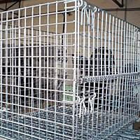 Buy cheap Wire Mesh Containers product