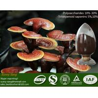 Quality Ganoderma Lucidum sporocarp Extract for sale