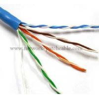 RJ45 Plug Cat5e UTP Cable High Performance BC Indoor Network Cable