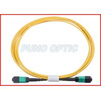 24 X Lanes LC Fiber Optic MPO Trunk Cable OS2 Single Mode Low Insertion