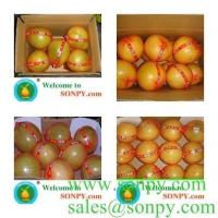 Buy cheap fresh fruit-pomelo product