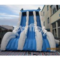 Buy cheap giant slide from Wholesalers