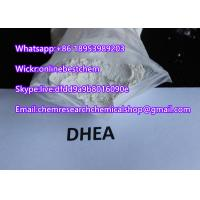 China Anti Aging Dehydroepiandrosterone / DHEA Raw Steroid Powders Pharmaceutical Raw Materials on sale