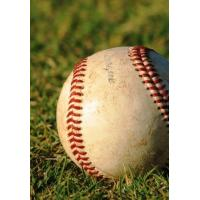 Buy cheap Best baseball grass for school SJAGPE-3k from wholesalers