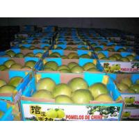 Buy cheap Chinese Honey Pomelo product