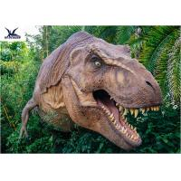 Buy cheap Dinosaur Yard Statue With Realistic Head Model , Dinosaur Garden Sculpture  product