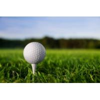 Buy cheap Best and newest golf grass SJAGF10-3L product