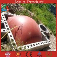 Buy cheap Medium Size Anaerobic Digester China Biogas Plant product