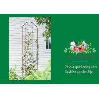 Buy cheap Metal Wall Garden Flower Trellis Powder Coated For Climbing Flowers product