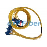 24 Fiber Breakout Fiber Optic Patch Cord , Universal Fiber Optic Jumper
