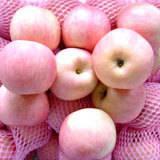 Buy cheap Fresh Apple / Fuji Apple product