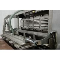 Automatic Energy Saving Paper Pulp Molding Machine For Molded Pulp Fruit Tray