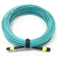 China 12 Core MPO - MPO Patch Cable Multi Mode Low Loss OM3-300 OFNP Material 30M Length on sale
