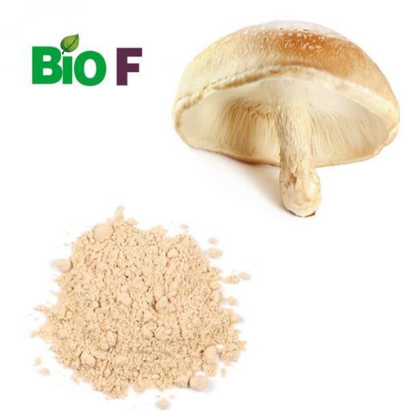 Quality Pure Vegetable Extract Powder Shiitake Mushroom Powder 10% ~ 50% Polysaccharide for sale