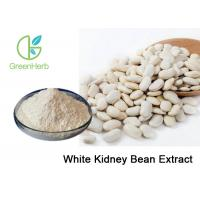 Plant Extract 1% Phaseolin White Kidney Bean Extract Phaseolus Vulgaris L