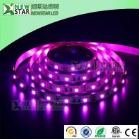 China 3825 RGB red blue green 3 colors in one LED SMD3528 RGB full color dc12v 24v 3528smd rgb led strip lights for DMX design on sale