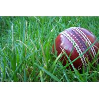 Buy cheap artificial lawn for Cricket pitches--SKYJADE product
