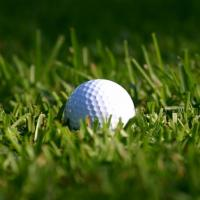 Buy cheap Best and newest golf grass SJAGF10-3i from wholesalers