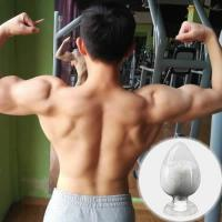 China Muscle Gain Nandrolone Undecylate Nandrolone Undecanoate  862-89-5 weight loss on sale