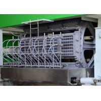China Auto Recycling Paper Egg Tray Machine , Fruit tray / Egg Carton Pulp Moulded Machinery on sale