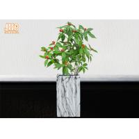 Buy cheap Square Plant Pots Clay Flower Pots Marble Finish Pot Planters Indoor Floor Vases product