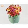 Buy cheap Stoneware Flower Pots Mini Succulents Plant Pots Flower Shaped Flower Pots from wholesalers