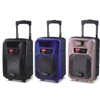 Pro Active Outdoor Portable Bluetooth Trolley Speaker Battery Powered PA System