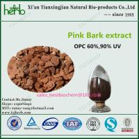Buy cheap Pinus pinaster Pink Bark Extract product