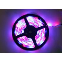 China Flexible 12V 5m RGB LED Strip Lights Color Changing for Home on sale