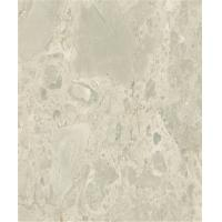 White Decorative Marble Slab Countertops Surface Polished Design
