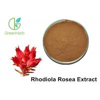 China 100% Natural Plant Extracts / Rhodiola Rosea Extract 1%-10% Rosavin 1%-5% Salidroside on sale