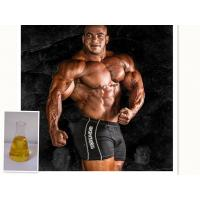Buy cheap Oil Yellow Liquid Injectable Anabolic Steroids Supertest 450 For Muscle Bodybuilding product