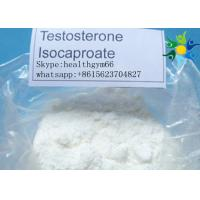 Bodybuilding White Powder Testosterone Anabolic Steroid Test Deca Testosterone Decanoate