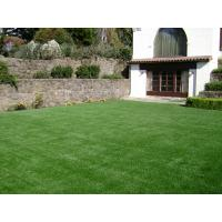 Buy cheap indoor green grass product