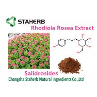 China Female Health Rhodiola Rosea Extract Pure Natural Plant Extracts Salidrosides 3% on sale