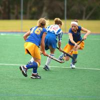 Buy cheap artificial grass for hockey(SJAHK13) product