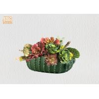 Buy cheap Succulents Plant Pots Green Color Flower Pots Cactus Design Pot Planters Tabletop Flower Pots product