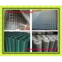 Wire Mesh Export to Durban / Welded Wire Mesh Hexagonal Wire Mesh