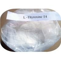 High Purity L Thyroxine T4  CAS 51-48-9 , Pharmaceutical Grade Weight Loss Steroids