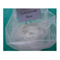 steroids  Testosterone Base  white powder for gaining muscle