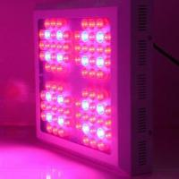 Buy cheap LED Grow Light in Red/Blue, 84x3W, Ideal for Replacing Metal Halide, HPS product