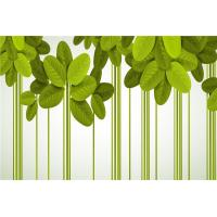China Green Leaf Bamboo Fiber Waterproof Wall Panels For Bathrooms / Living Room on sale