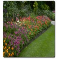 Buy cheap Landscaping turf SJHQDS40-4S from wholesalers