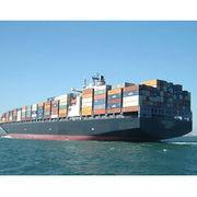 China DHL FEDEX TNT Ocean Freight Carriers Freight Forwarding Agent on sale