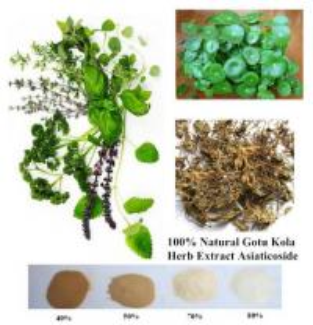Buy cheap 100% Natural Gotu Kola Herb Extract Asiaticoside 95% powder product