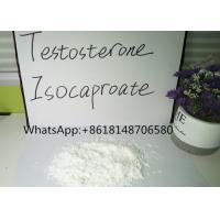Buy cheap Testosterone Raw Powder Isocaproate Bodybuilding Test ISO Steroid Pass Customs product